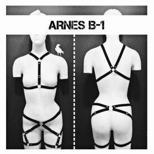 arnes b1